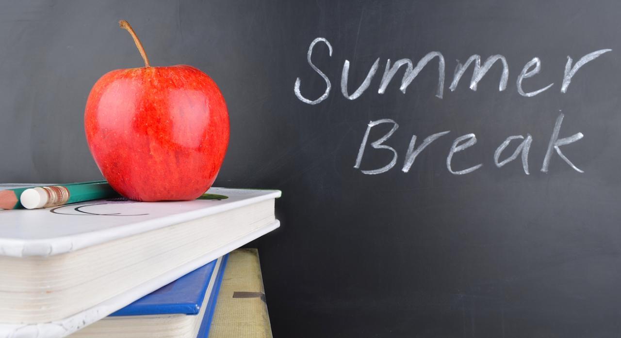 TS. Es nulo el cese durante julio y agosto de los profesores interinos de centros no universitarios