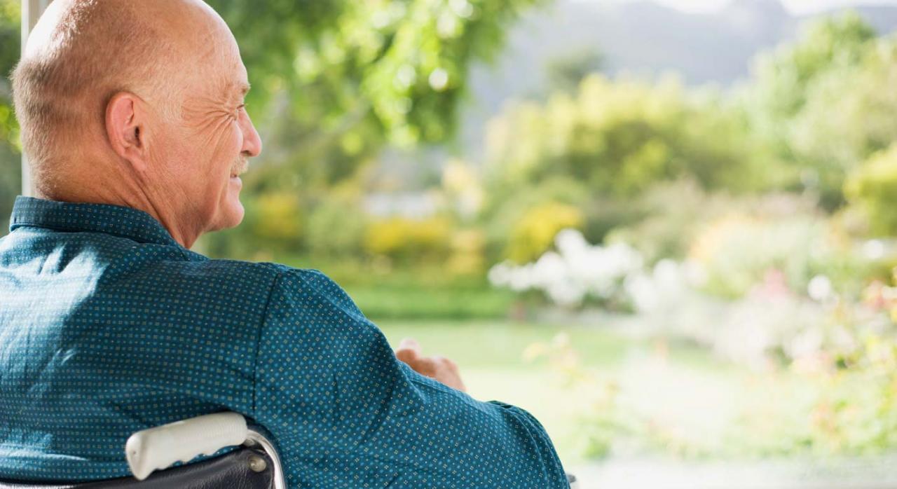 Pensionista en silla de ruedas