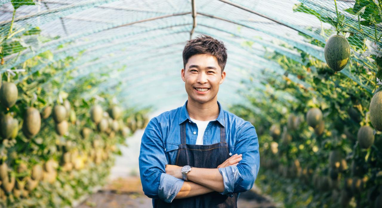 Se consolida el empleo de jóvenes extranjeros en el sector agrario. Imagen de jóven asiático en una granja