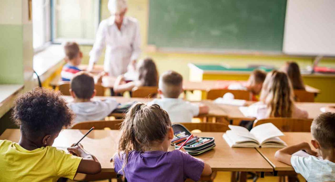 La escolarización del menor no es obstativa. Vista trasera de una clase de primaria